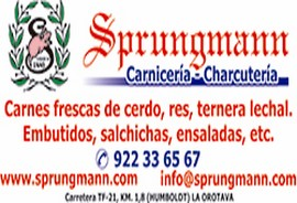 sprungmann1 (Copiar)